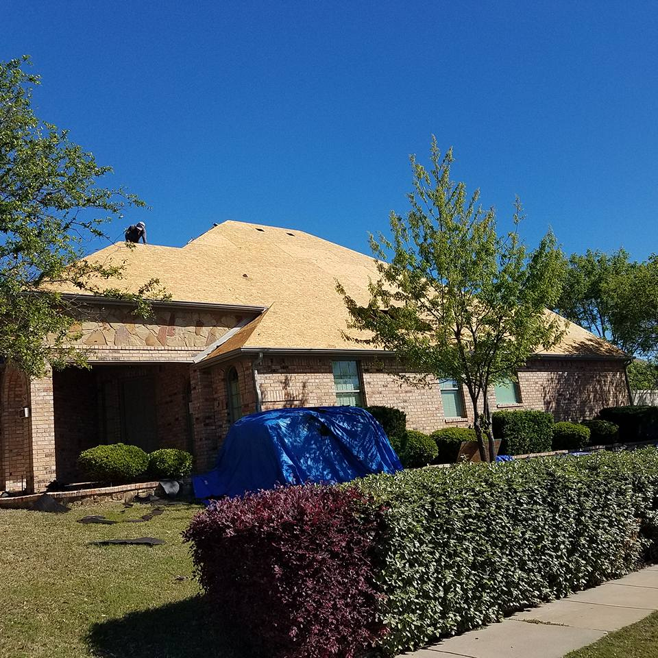 Springtree Roofing And Restoration Old Shingles And Felt