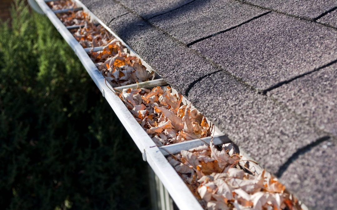 7 Reasons Why Your Gutters are Overflowing