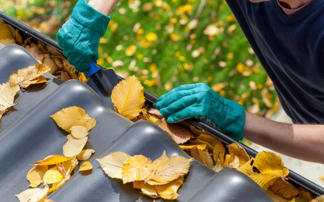 Avoid Autumn Woes with This Fall Roof Readiness Checklist