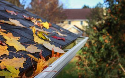 Why Fall is the Perfect Season for Roof Repairs
